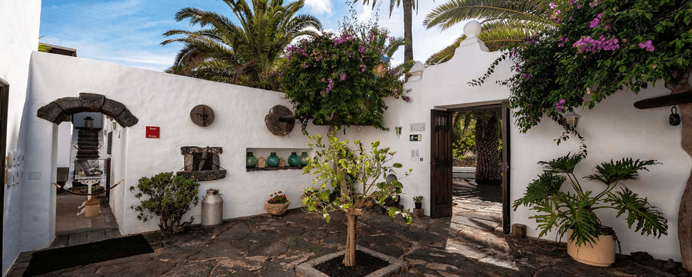 Things to do in Lanzarote Cesar Manrique House Museum